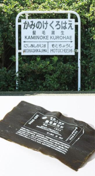 メソケアプラス × 銚子電鉄ネーミングライツ笠上黒生駅 → 髪毛黒生駅